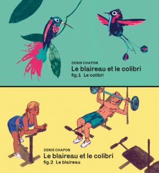 Le blaireau et le colibri